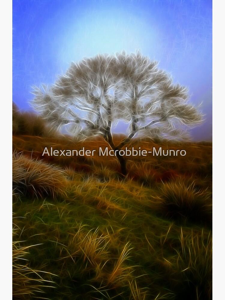 Tree  du  Fractalius by Alexanderargyll