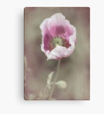 Dressed for Spring Canvas Print