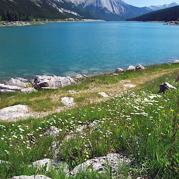 Medicine Lake 2 - Jasper by buzzword