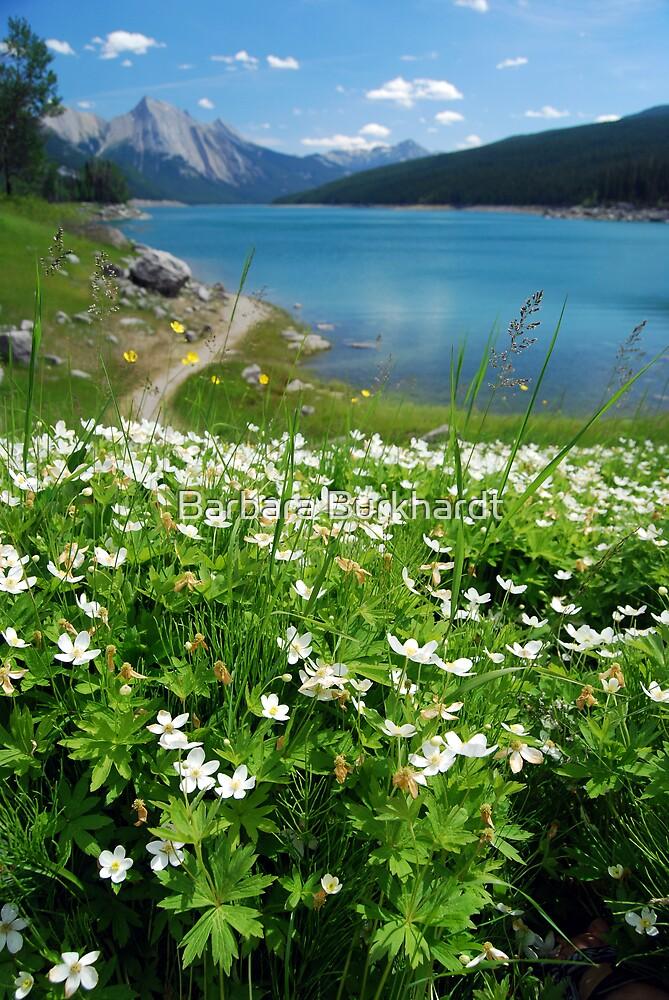 Flowers of the Lake by Barbara Burkhardt