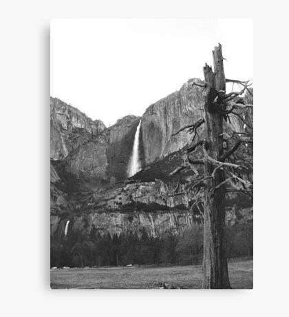 Upper & Lower Yosemite Falls (Black & White) Canvas Print