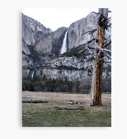 Upper & Lower Yosemite Falls Canvas Print