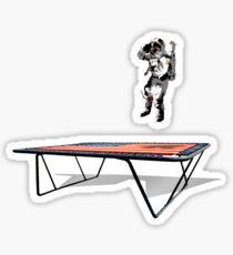 Astro-naught Sticker