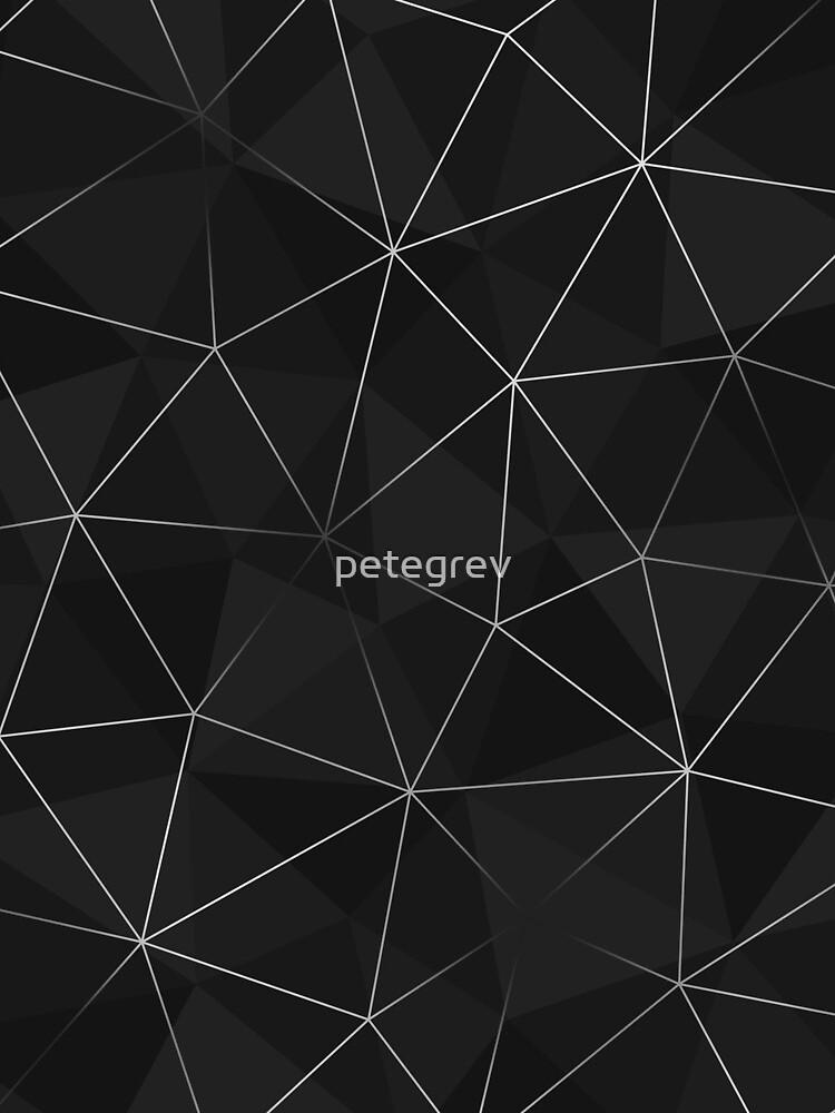 Kintsugi - Silver Mesh by petegrev