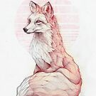 Vulpes Vulpes  by mikekoubou
