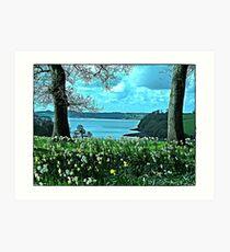 """"""" Tresilick Garden Art Print"""