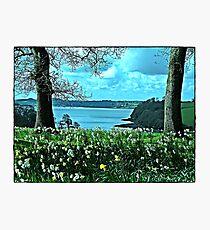 """ Tresilick Garden Photographic Print"