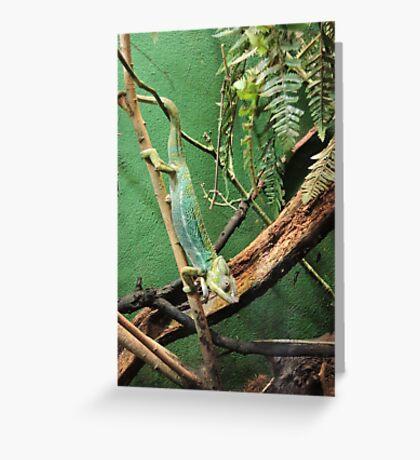 Pascal Greeting Card