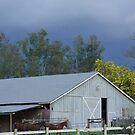 Windsor Barn by Robert Khan