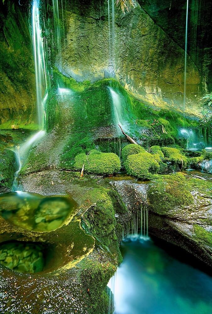 Rainforest Cascades, Tasmania by Kevin McGennan