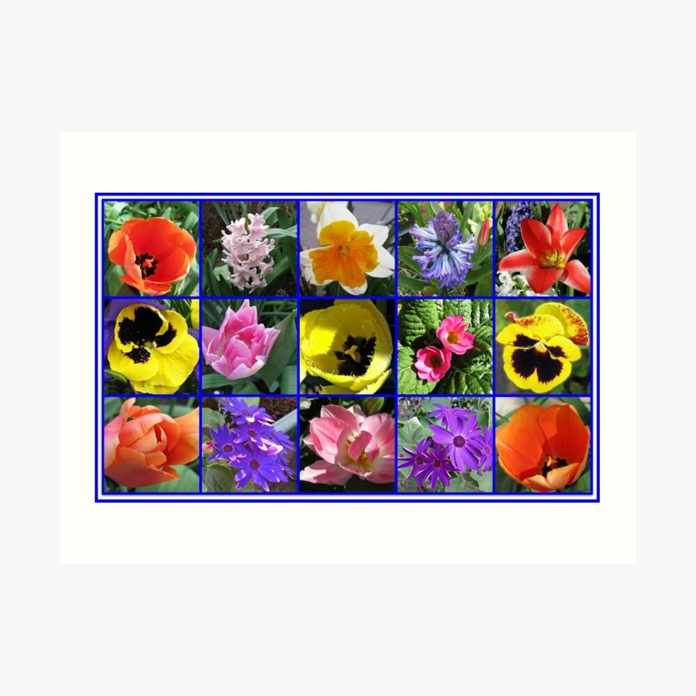 Blumen der Frühlings-Collage Kunstdruck