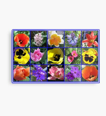 Blumen der Frühlings-Collage Metallbild