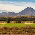 A grandeur view of Mt Doom by autumnleaf