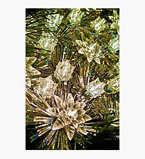 Christmas Star Photographic Print