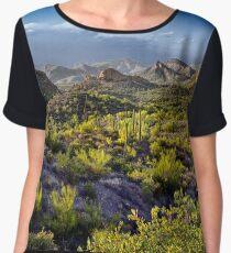 Arizona's Desert Landscape Chiffon Top