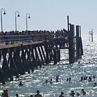 Beach,Jetty And FUN. by dennis wingard