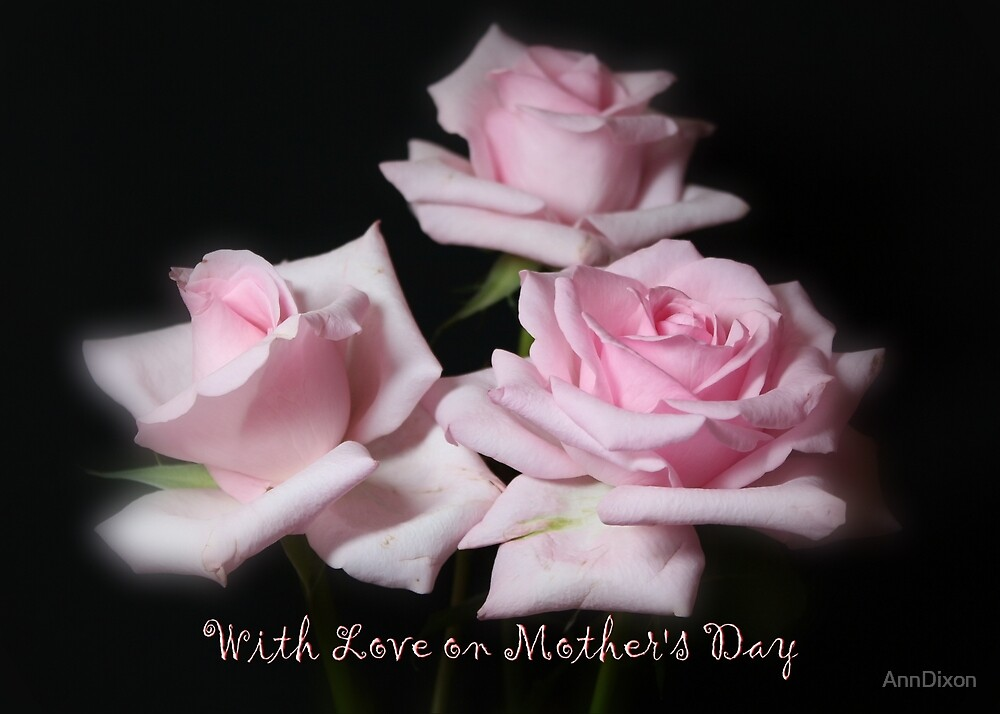 Mother's Day Roses by AnnDixon