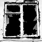 window by anticus50