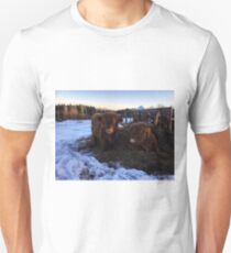 Scottish Highland Cattle Cow and Calf 1642 Unisex T-Shirt
