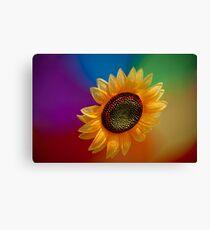 Sunflower-high Canvas Print