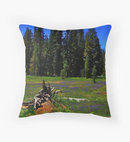 Summit Meadow Throw Pillow