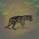 Tiger by David Dehner