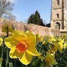 Springtime in Avebury by Tizz07