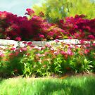 """""""Red & Pink Flowers"""" by kcd-designs"""