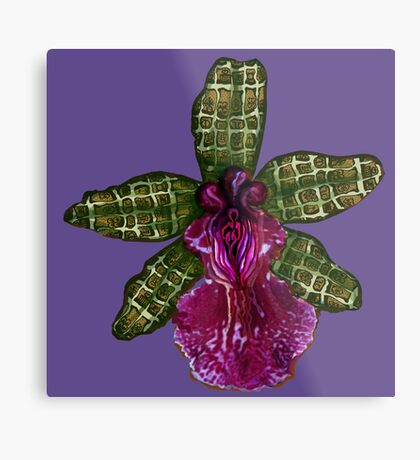Pinque and Purrple Metal Print