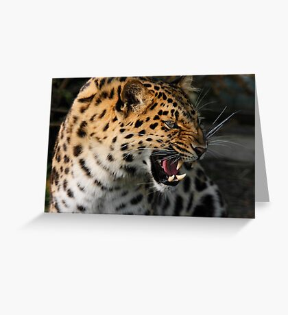 Angry Leopard Greeting Card