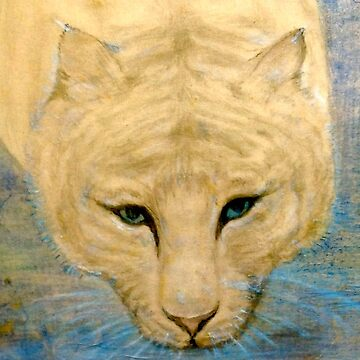 """ TIGER '  ..  .. by MardiGCalero"