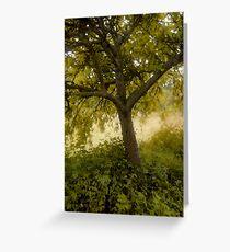 Pastel Tree Greeting Card