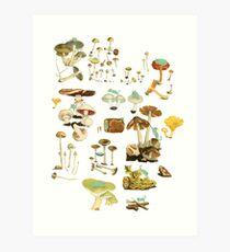 Feline Fungus! Art Print