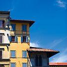 Florence Skyline by Christopher Bookholt