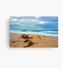Sand Seaweed..Sticks.... Canvas Print