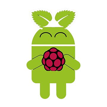 Raspberry Pi Android by tamagothings