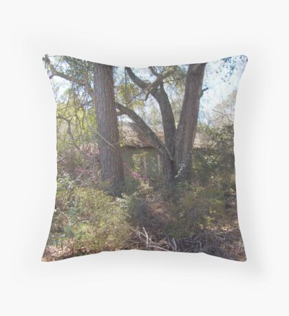 This old house... Throw Pillow