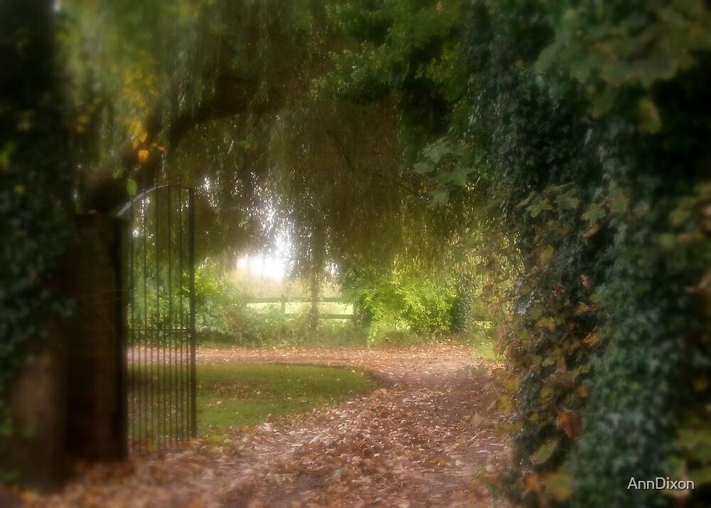 Magical Gateway by AnnDixon