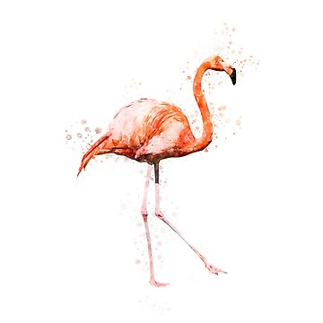 Watercolor Flamingo Painting on White Background by DarkMaskedCats