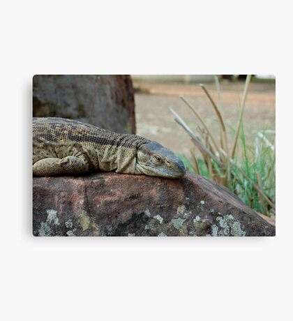 THE ROCK MONITOR Canvas Print