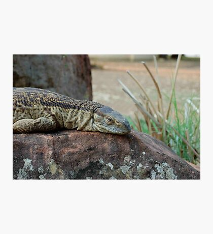 THE ROCK MONITOR Photographic Print