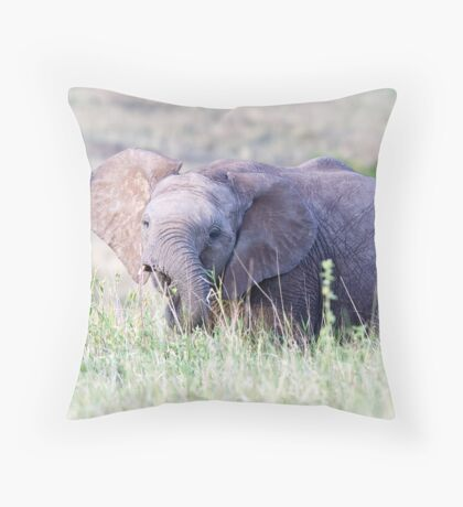 Late afternoon snack Throw Pillow