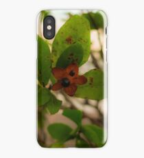 Green/Red iPhone Case