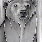 Sweet Bear - Charcoal  by Puddingshades