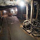 Underground at the State Coal Mine, Wonthaggi by Nic Haygarth
