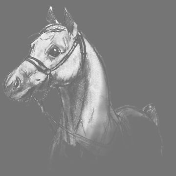 Horse-3 by 700level