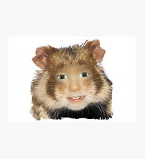 Hamster Child Photographic Print