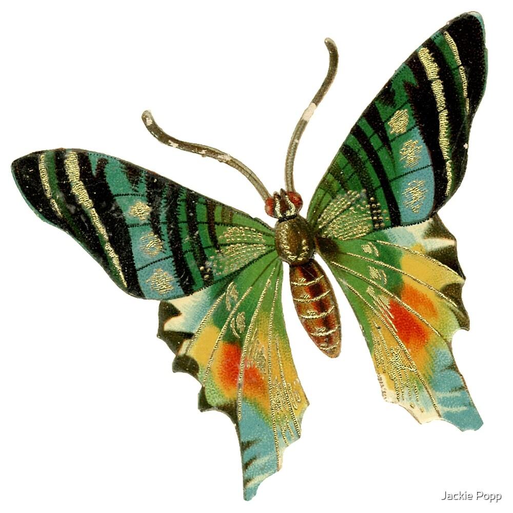 Butterfly 1 by Jackie Popp