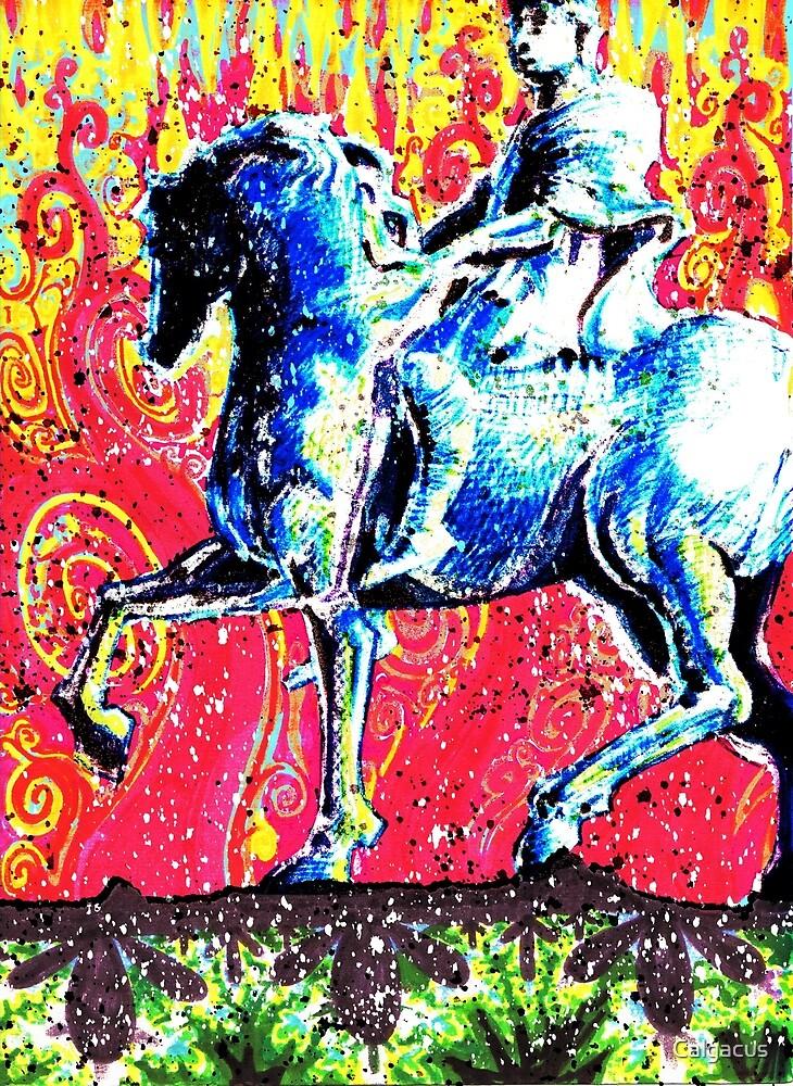 HE RIDES A WHITE HORSE  by Calgacus
