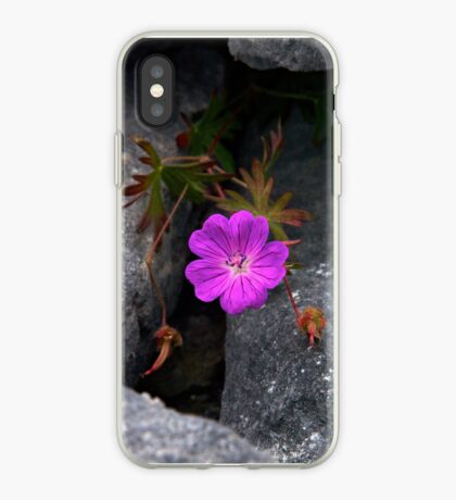 Bloody Cranesbill, Dun Aengus, Inishmore iPhone Case